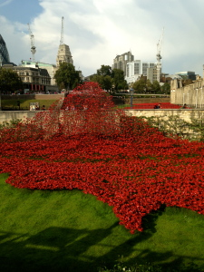 these are the World War II poppies surrounding the Tower of London. they are in remembrance of the lives that were lost- they are ceramic and beautiful. I will post a picture in November when the exhibit is complete!