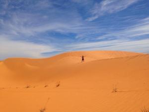 famous sand dunes of Mui Ne, Vietnam!