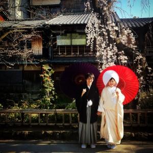 Married under the Sakura!