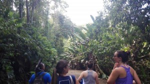 This is me, and my friends in AIFS walking through the Rain Forest at Manuel Antonio!