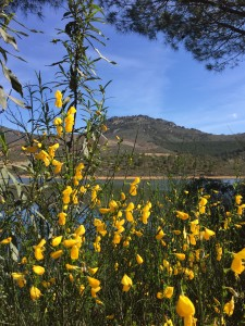 Hike through the Spanish sierras